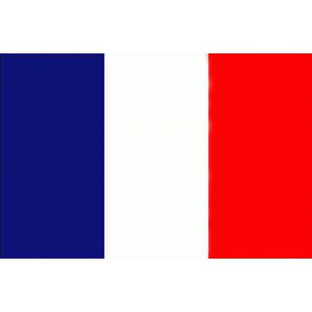 Drapeau Flag Europe - Pays France Français 150x90cm - Polyester - Miltec 16730000